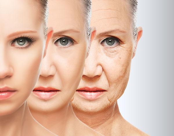 Datos curiosos sobre los rellenos faciales